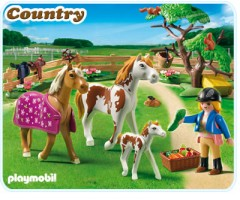 Загон для лошадей