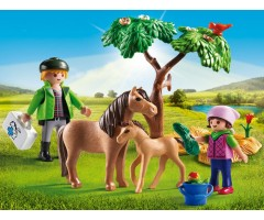 Ветеринар с пони и жеребенком