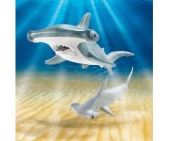 PM9065 Молотоголовая акула с детенышем