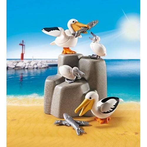 «Семья пеликанов» PM9070