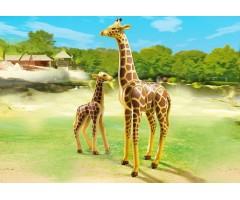PM6640 Жираф со своим детенышем жирафом