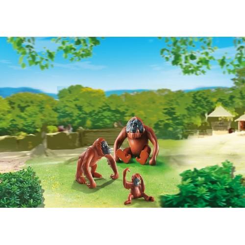 «Семья Орангутангов» PM6648